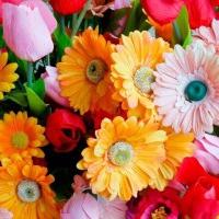 Kwiaty sztuczne to Najlepsza alternatywa dla roślin naturalnych